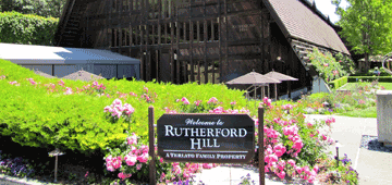 Rutherford Wine Tours