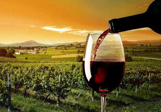 Napa Wine Tour Limousine Service