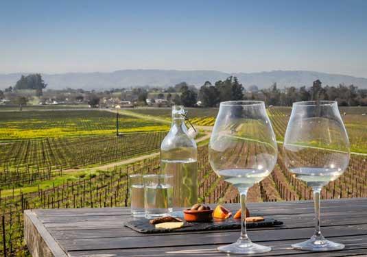 Sonoma Wine Tour Limousine Service